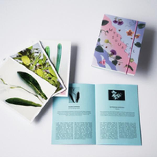 """Set 13 cartes postales """"Mystical Source"""""""